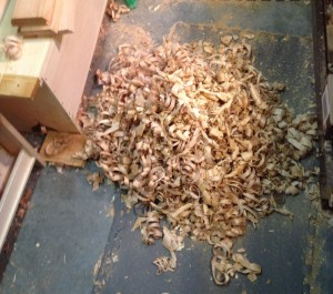 Big pile of Alder shavings.